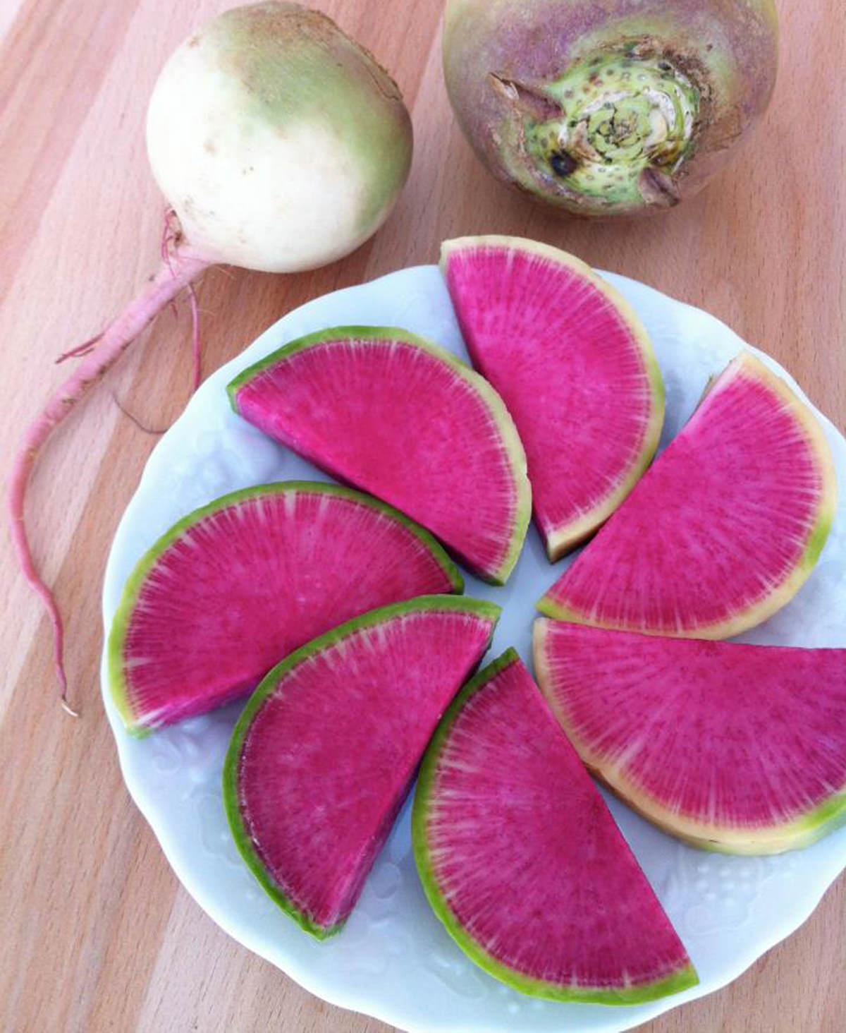 The-Watermelon-Radish