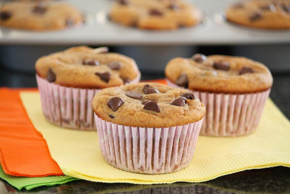 Chocolate Chip Pumpkin Muffins (Grain-Free) — The Fountain Avenue ...