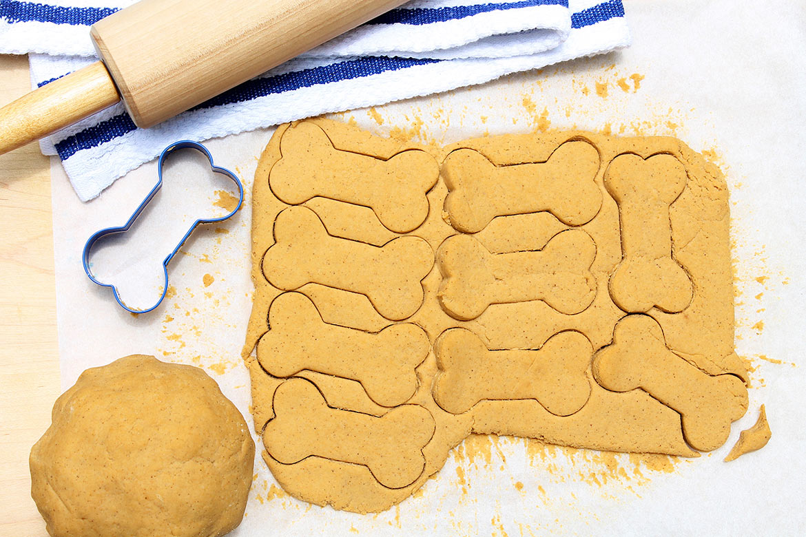 Homemade Dog Treats are easy to make and will delight your furry friends--with ingredients you approve of!