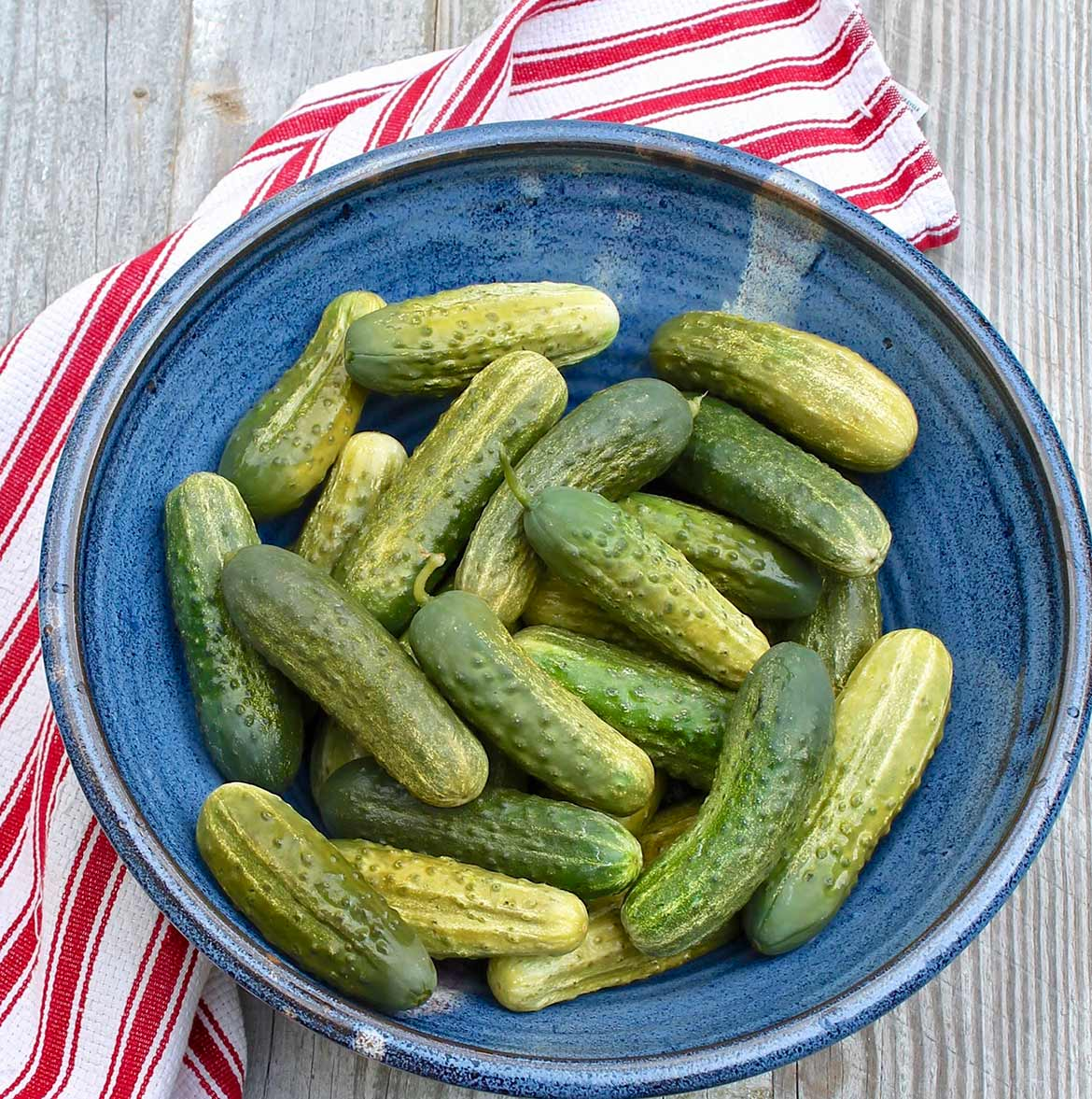 Refrigerator Dill Pickles – No canner is needed and once the spices are assembled, these crisp pickles come together easily and may just become a summertime favorite!